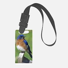 Bluebird Luggage Tag