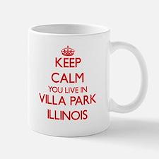 Keep calm you live in Villa Park Illinois Mugs