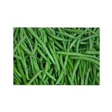 Fresh green beans Magnets