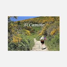 El camino de Santiago, Spain, Europe (capt Magnets