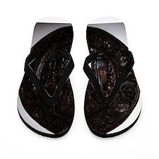 Decor_Bronze_MedallionPioneer_x Flip Flops
