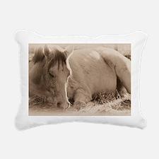 Snoozing Rectangular Canvas Pillow