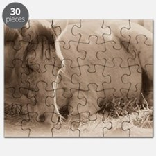 Snoozing Puzzle