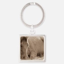 Snoozing Square Keychain