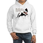 May ALL your Christmas Dreams Hooded Sweatshirt