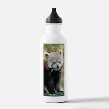 Red Panda 004 Water Bottle