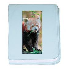 Red Panda 004 baby blanket
