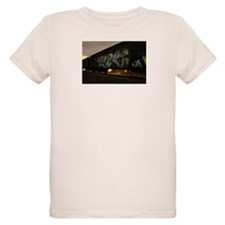 Vandal boxcar T-Shirt