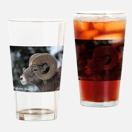 Big horn Sheep Drinking Glass