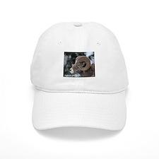 Big horn Sheep Baseball Baseball Cap