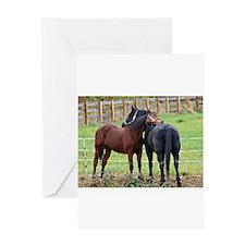 Cute Morgan horse Greeting Card