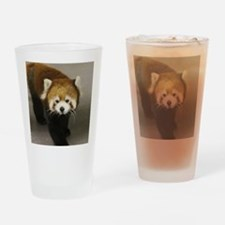 Curious Xia Drinking Glass