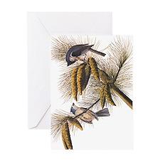 Audubon Crested Titmouse Greeting Cards