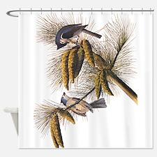 Audubon Crested Titmouse Shower Curtain
