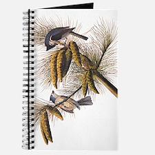 Audubon Crested Titmouse Journal
