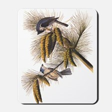 Audubon Crested Titmouse Mousepad