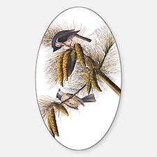 Audubon Crested Titmouse Decal