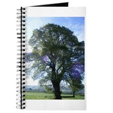 Oak tree Journal