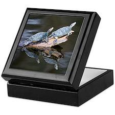 Turtles Sunbathing Keepsake Box