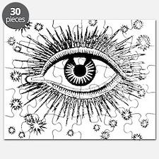 Eye Eyeball Puzzle