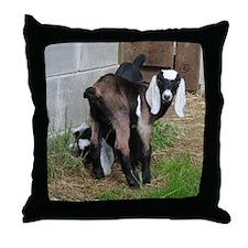 Nubian Doeling Throw Pillow