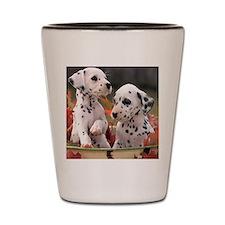 Dalmatian Puppies Shot Glass