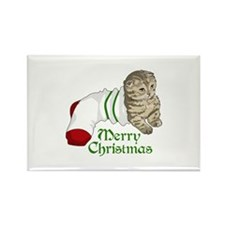 MERRY CHRISTMAS CAT Magnets