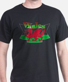 Welsh decorative ribbon T-Shirt