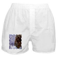 Buffalo in Winter Boxer Shorts