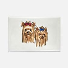 YORKSHIRE TERRIER HEADS Magnets