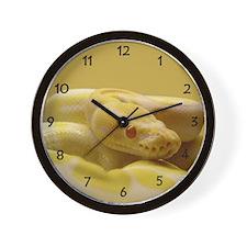 Albino Ball Python Wall Clock