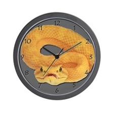 Eyelash Viper Wall Clock