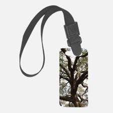 Cute Oak Luggage Tag