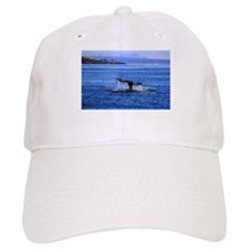 Gray Whale Point Loma Baseball Baseball Cap