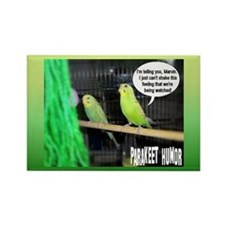 """Parakeet Humor #3"" Rectangle Magnet"