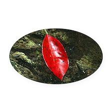 Red Leaf Oval Car Magnet