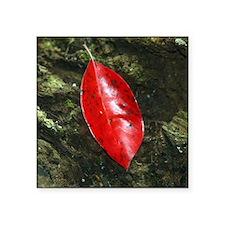 """Red Leaf Square Sticker 3"""" x 3"""""""