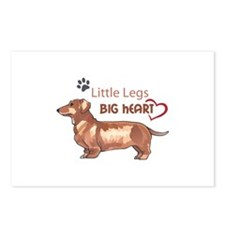 LITTLE LEGS BIG HEART Postcards (Package of 8)