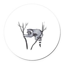 RACCOON IN TREE Round Car Magnet