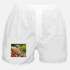 """FANCY FEMALE"" Boxer Shorts"
