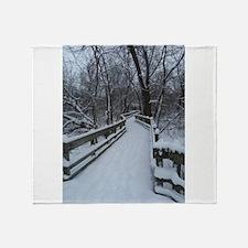winter in cleveland Throw Blanket