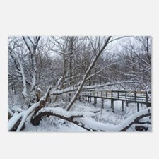 winter in cleveland Postcards (Package of 8)