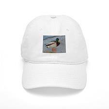 quack Baseball Cap