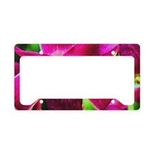Orchid License Plate Holder
