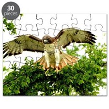 Texas Red Tail Hawk Puzzle
