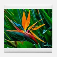 Bird of Paradise Tile Coaster