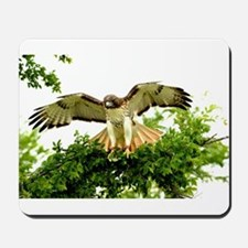 Texas Red Tail Hawk Mousepad