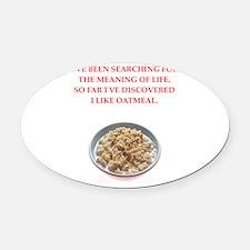 oatmeal Oval Car Magnet