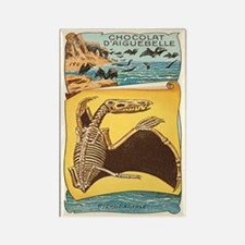 Pterodactyle Rectangle Magnet
