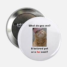 Pet or Coat? (Ginger Cat) Button